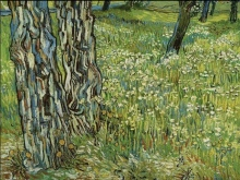 Pine Trees and Dandelions in the Garden of Saint-Paul Hospital- VAN GOGH